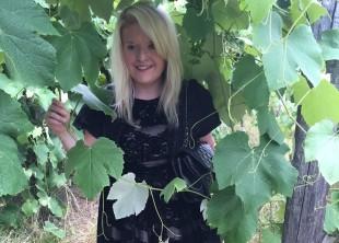 Vines 2015
